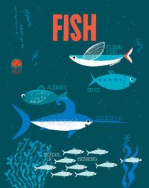 md_fish