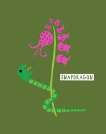 sg_snapdragons