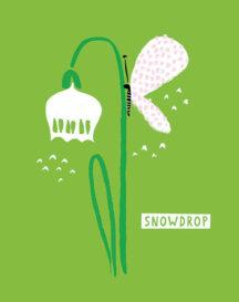 sg_snowdrops